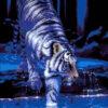 №5 Тигр в воде 23-2798-НТ (2010-03) оригинал