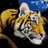 №10 Тигр планета 31-1539-НТ (2010-04) сетка