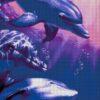 №37 Дельфины 22-3253-НД (2010-11) сетка