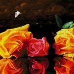 Натюрморт с розами 40-4510-НН (2016) сетка