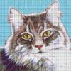 №20 Кот ангора 23-0765-КЧБ схема сетка