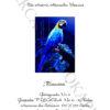 №372 Голубой Ара 45-2944-НГ (2020-01) титул нем