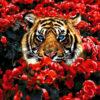 №382 Тигр в цветах 40-2530-НТ (2020-04) превью