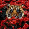 №382 Тигр в цветах 40-2530-НТ (2020-04) сетка