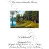 №385 Хвойный лес 43-3285-НХ (05-2020) титул нем