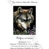 №407 Волк в астрах 37-2668-НВ (2021-01) титул нем